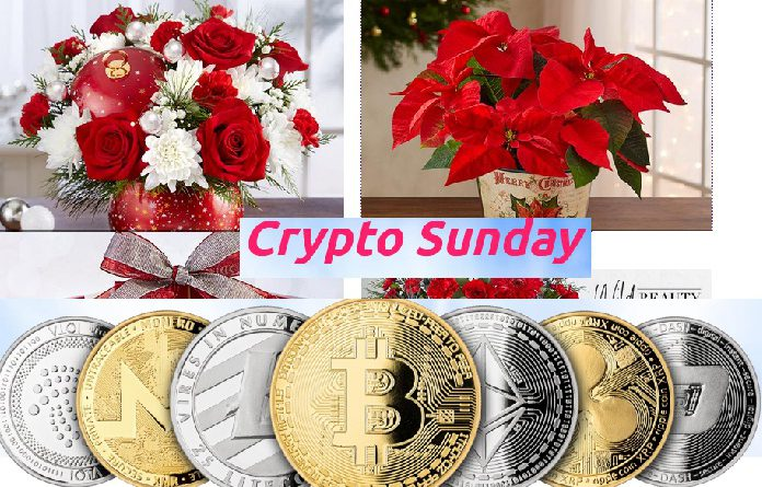 crypto sunday